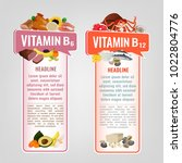 vitamin b12 and vitamin b6... | Shutterstock .eps vector #1022804776