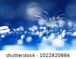 dandelion seeds on a light blue ... | Shutterstock . vector #1022820886