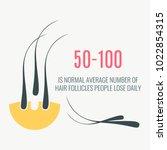 data statistics infographics... | Shutterstock .eps vector #1022854315