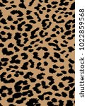 Leopard skin pattern vector, black pattern isolated.