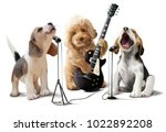 Stock photo three dogs musicians watercolor drawing 1022892208