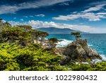 big sur  california | Shutterstock . vector #1022980432