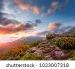 wonderful alpine highlands with ...   Shutterstock . vector #1023007318