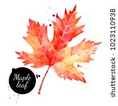 watercolor maple leaf... | Shutterstock . vector #1023110938
