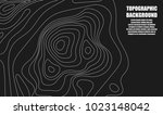 background of the topographic... | Shutterstock .eps vector #1023148042