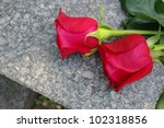 Two Red Roses On A Grave