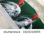 Hydroelectric Station With...