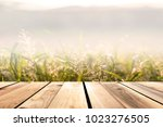 wooden floor  leaves  grass ... | Shutterstock . vector #1023276505