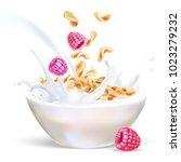 raspberry corn flakes oats milk ... | Shutterstock .eps vector #1023279232