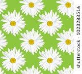 the chamomile flower. seamless... | Shutterstock .eps vector #1023283516