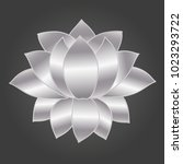 vector blooming lotus flower... | Shutterstock .eps vector #1023293722