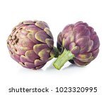fresh artichokes isolated on... | Shutterstock . vector #1023320995
