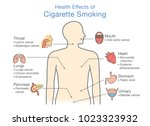 diagram about health effect of... | Shutterstock .eps vector #1023323932