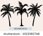 beautiful hand drawn botanical... | Shutterstock .eps vector #1023382768