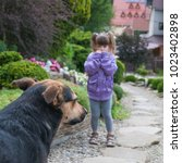 little girl is scared by a dog. | Shutterstock . vector #1023402898