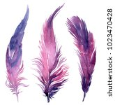 Set Of Watercolor Boho Feather...