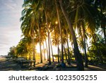 beautiful walakiri beach in... | Shutterstock . vector #1023505255