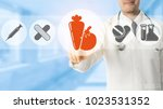 healthcare nutrition concept.   ... | Shutterstock . vector #1023531352