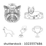 a dog in a lounger   a muzzle... | Shutterstock .eps vector #1023557686