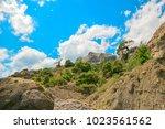 beautiful summer sea landscape...   Shutterstock . vector #1023561562