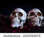 selective focus image of human... | Shutterstock . vector #1023565075