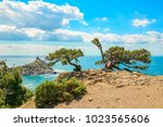 beautiful summer sea landscape...   Shutterstock . vector #1023565606