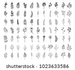 bloom collection. set of hand... | Shutterstock .eps vector #1023633586