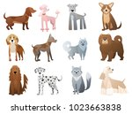 Stock vector vector funny and cute cartoon dogs and puppy pet characters set 1023663838