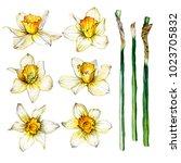 hand drawn easter set... | Shutterstock . vector #1023705832