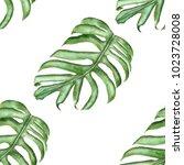 watercolor seamless pattern... | Shutterstock . vector #1023728008