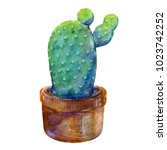 watercolor cactus isolated on...   Shutterstock . vector #1023742252