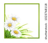 green frame with grass and... | Shutterstock .eps vector #1023768118