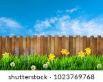 spring background with flowers  | Shutterstock . vector #1023769768