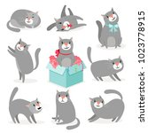 cat character. gray cute cat... | Shutterstock .eps vector #1023778915
