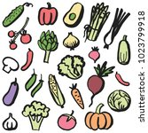 set of simple drawn vegetables... | Shutterstock .eps vector #1023799918