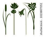 art nouveau floral elements for ... | Shutterstock . vector #1023807052