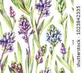 seamless pattern hyacinths...   Shutterstock . vector #1023842335