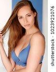 stunning brunette in blue bra ... | Shutterstock . vector #1023921076