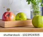 green and red apples in a... | Shutterstock . vector #1023924505