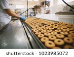 cookie factory  food industry.... | Shutterstock . vector #1023985072
