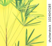 variations tropical palm leaves ...   Shutterstock . vector #1024045285
