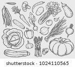vector vegetables hand drawn... | Shutterstock .eps vector #1024110565