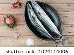 two fresh mackerels in a black... | Shutterstock . vector #1024114006