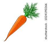 the orange carrots. vector. art.... | Shutterstock .eps vector #1024190266