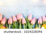 spring flowers. tulip bouquet... | Shutterstock . vector #1024228396