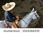 mexican charros mariachis... | Shutterstock . vector #1024266535