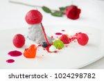 elegant dessert in plate ...   Shutterstock . vector #1024298782