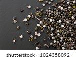 job's tears   coix lachryma... | Shutterstock . vector #1024358092