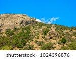 beautiful summer sea landscape...   Shutterstock . vector #1024396876