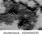black and white grunge dust... | Shutterstock .eps vector #1024434235